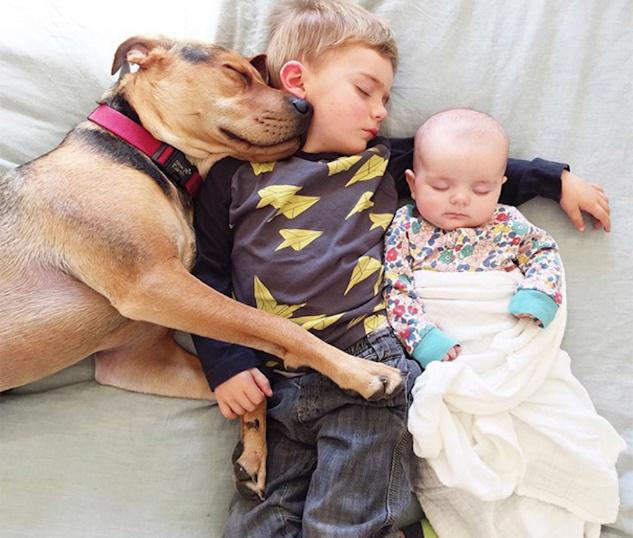 Rezultat iskanja slik za naptime for kids and pets